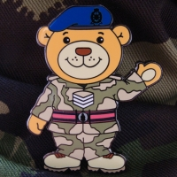Jersey_Field_Squadron_Royal_Engineers_Sergeant_Braile_Bear_2009